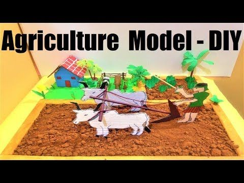 Agriculture Model For School Science Exhibition Project Organic Farming Youtube Idea Projects Essay On Soil Pollution In Kannada