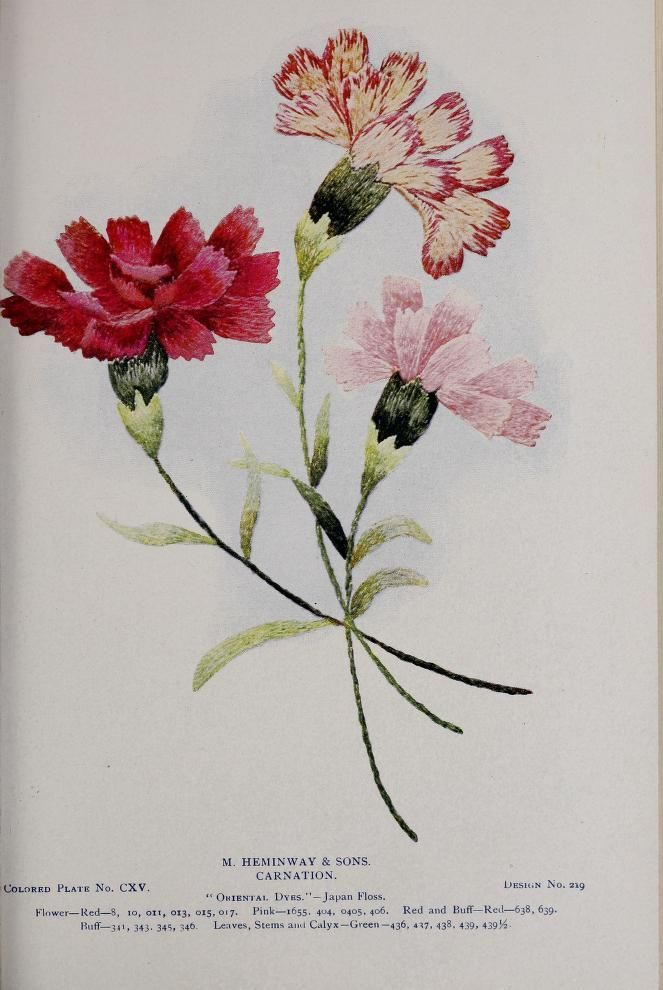 Image Result For Carnation Embroidery Japanese Embroidery Crewel Embroidery Tutorial Floral Embroidery Patterns
