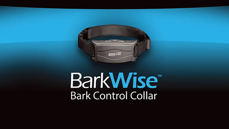Barkwise - Best Vibration Bark Control Collar Reviews - Introduction– if you train your dog, so it shall be. That is the plain rephrase I saw on the gate of one of the most popular dog training companies in town. However, none of the training methodologies that I have come across has intrigued me like the Barkwise bark control collar...