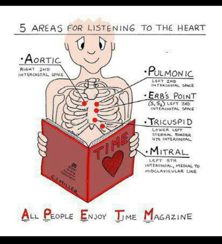 73 best medical assisting extras images on pinterest nursing cardiac auscultation points ape to fandeluxe Choice Image