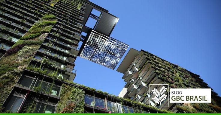 Arquitetos, designers e urbanistas se apropriam de fenômenos naturais tão diversos como cupinzeiros e frutas resilientes para projetar cidades inteligentes e sustentáveis.