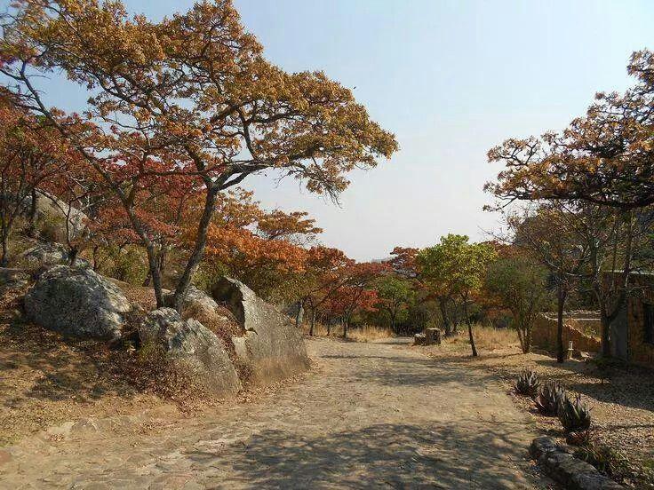 Rhodesian dirt road