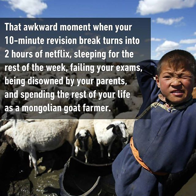 What is revision break? I never managed to finish the syllabus. Follow @9gag @9gagmobile #9gag #revisionbreak #tagforlikes #lol #FF