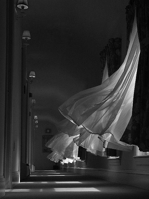 Windows, curtains, wind