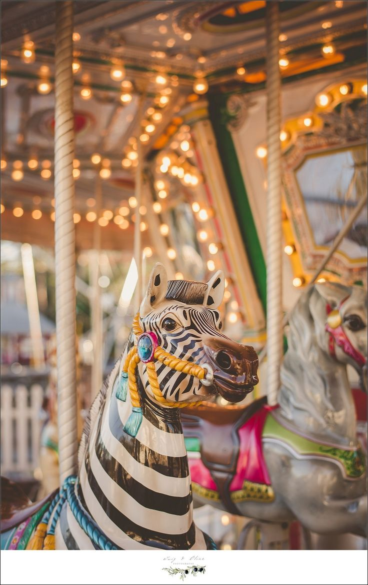346 best carouselcking horsefun images on pinterest rocking florida geotapseo Images