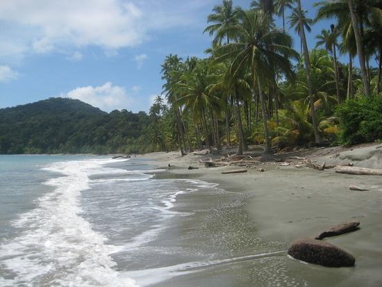 Isla Gorgona, Colombia. ✨ #TheCrazyCities #crazyColombia