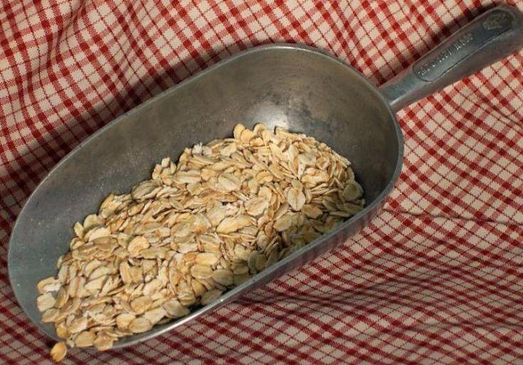 Understanding Grains (corn, wheat, multi-grain, etc.)