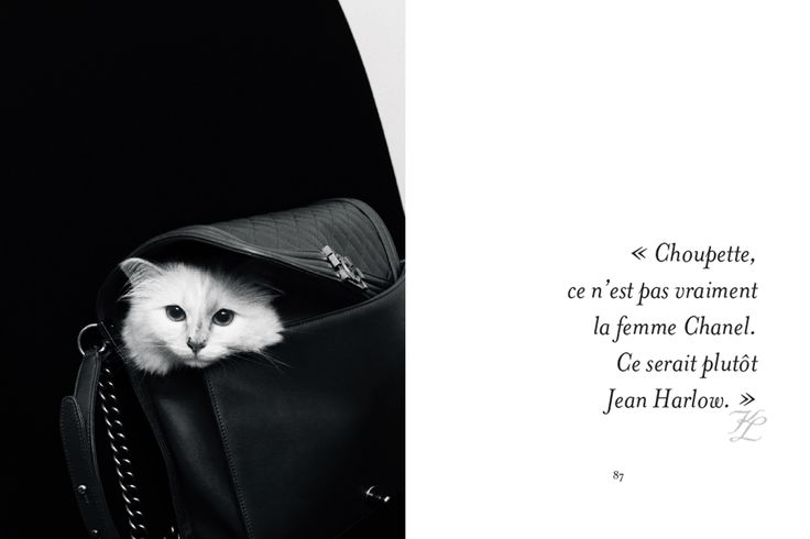 choupette le chat de karl lagerfeld est la star d un 2000 1332 citation. Black Bedroom Furniture Sets. Home Design Ideas