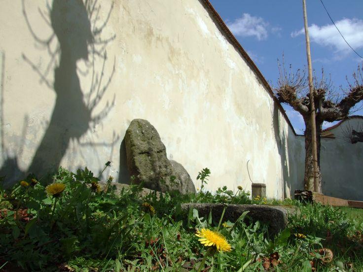 Manětín (distr. Plzeň- sever, west Bohemia) - old gotic crosses on the last cemetary with an dandelion