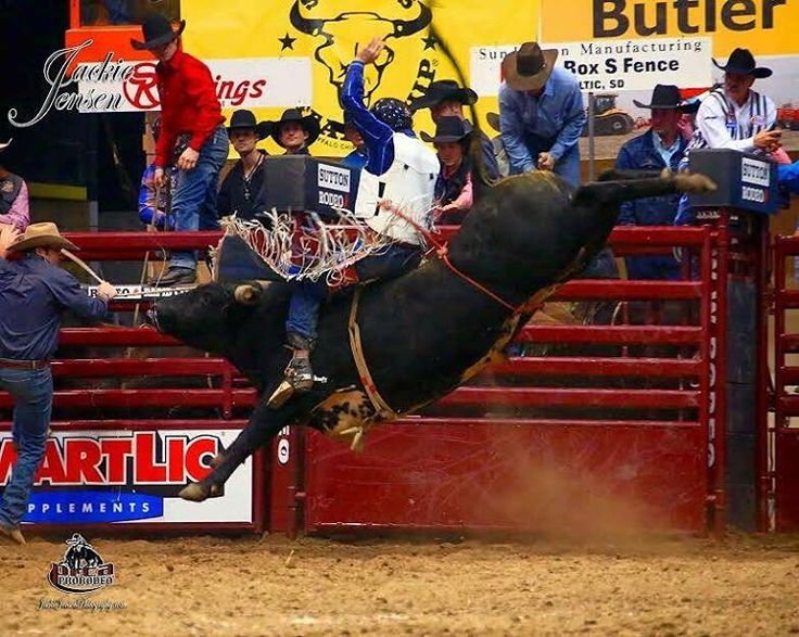 "Dalan Duncan added $3,779.00 to his 2017 earnings with this 87 point ride on Burch Rodeo's ""Scarface"", that was good for the night one win at the Rapid City Xtreme Bulls. JackieJensenphotography.com photo.  #bulls #bullriders #bullriding #prca #xtremebulls #champ #winning #points #standings #money #rapidcity #sd #southdakota"