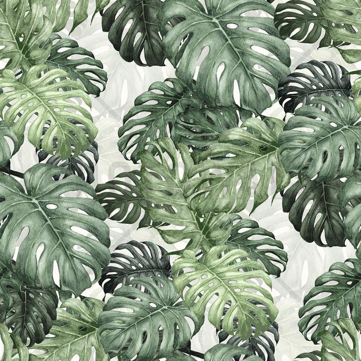Botany Monstera - Mural de pared y papel tapiz fotográfico - Photowall