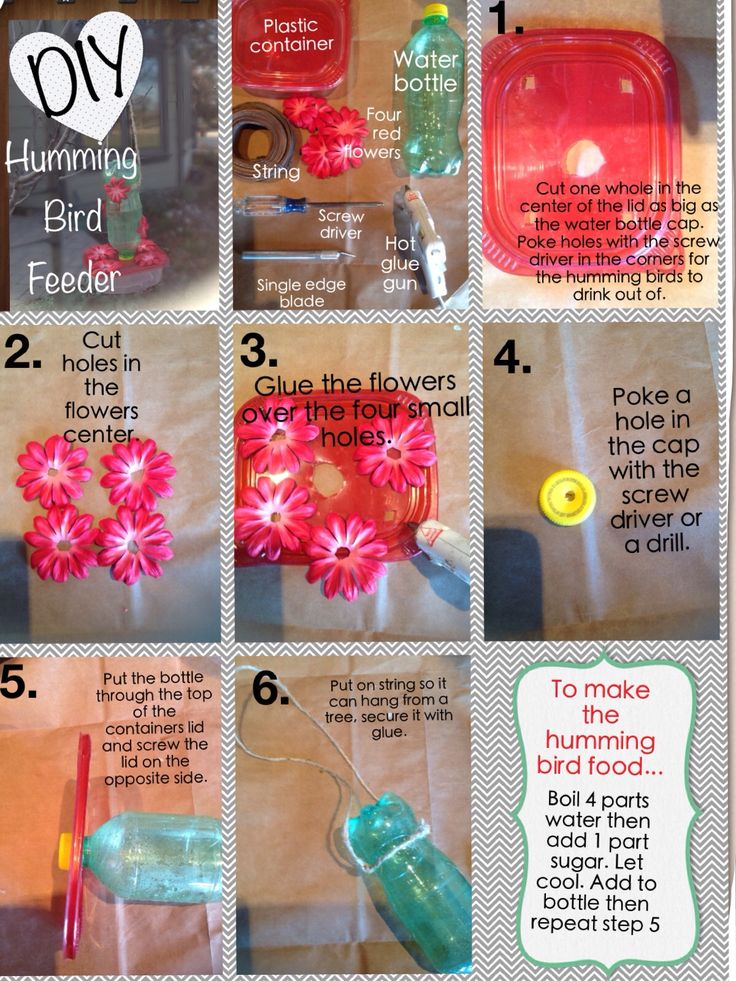 DIY HUMMING BIRD FEEDER