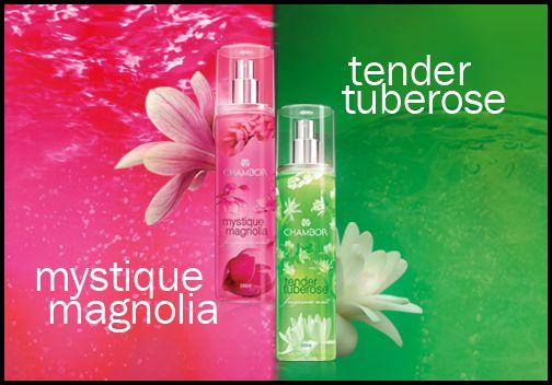 Mystique Magnolia v/s Tender Tuberose