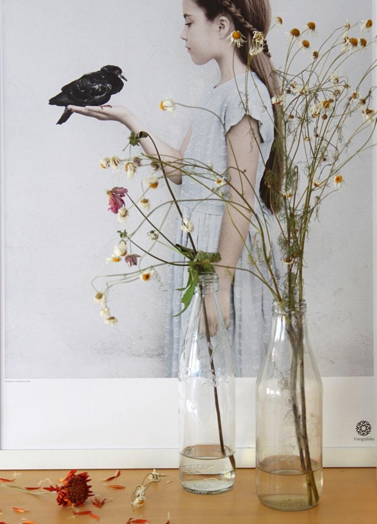 vissna blommor