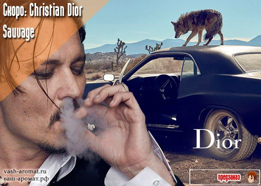 "Койоты, кактусы и Джонни Депп. Скоро. Мужской парфюм Sauvage Christian Dior - 11 Августа 2015 - Проект ""Ваш-Аромат.ру"": #ParfumInRussia #Dior #christiandior #джоннидепп"