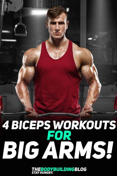 Check out The 4 Biceps Workouts for Big Arms! The premise behind these four workouts is that they help you grow bigger and stronger arms by delivering four different goals - 1) build crude muscle mass to make your arms look bigger; 2) add muscle definition so that they are sculpted to perfection; 3) Workout the bicep's shorthead so that your arms get that sharp look; and 4) workout the biceps peak - for those sick flexes. Check them out! #fitness #exercise #workout #muscle #bodybuilding