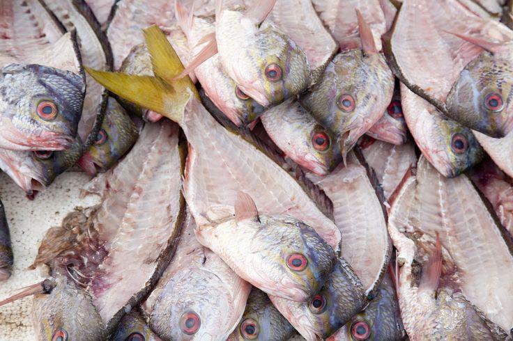 Fish, Jimbaran, Bali