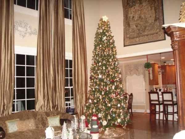 12 Foot christmas tree ideas