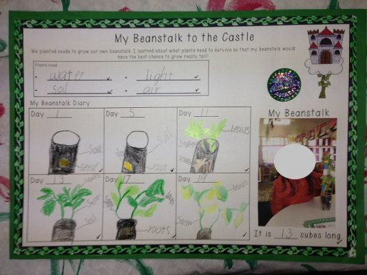 My Beanstalk to the castle science observation sheet. Perfect for Jack and the Beanstalk unit