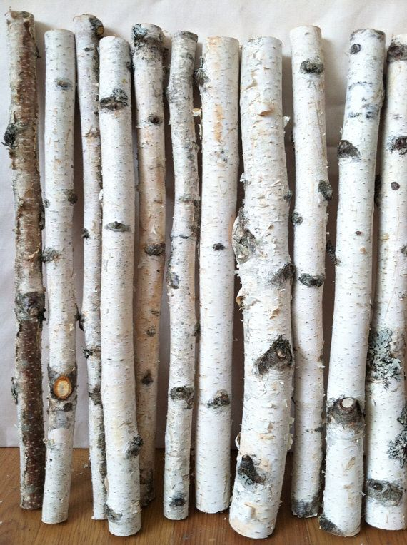 20 white birch logs crafts branches and baskets