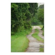 A happy, healthy, wooded trail, for riding the horse or running with the dog :)