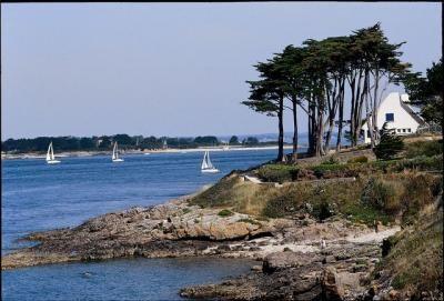 Golfe du morbihan (56) France                                                                                                                                                                                 Plus