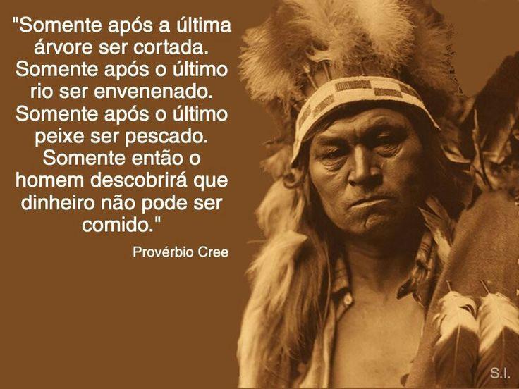 Pensamento Indígena                                                                                                                                                                                 Mais