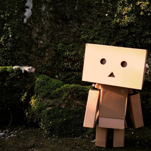 """"""" Being lost isn't always about missed direction, it's a calling. Sometimes you have to lose yourself to find other parts of who you are. """" . . #danbo #danboard #yotsuba #yotsubato! #figurine #toys #toygraphy #lost #quote #quotesoftheday"""