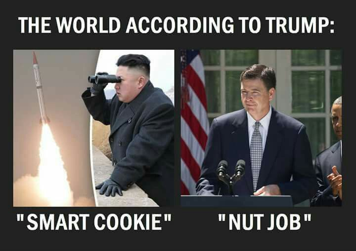 "YES HE DID...call Kim Jong-un, (the psychotic leader of North Korea)  a ""Smart Cookie"" and the former FBI Director, James Comey, a ""Nut Job.""  MAKING AMERICA GREAT AGAIN???"