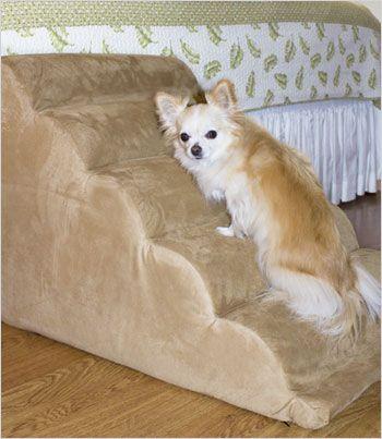 Best 25 Dog Stairs Ideas On Pinterest Future House Pet