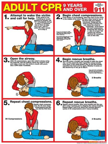 Adult CPR Professional Instructional Poster (2013 AHA Guidelines) - Fitnus