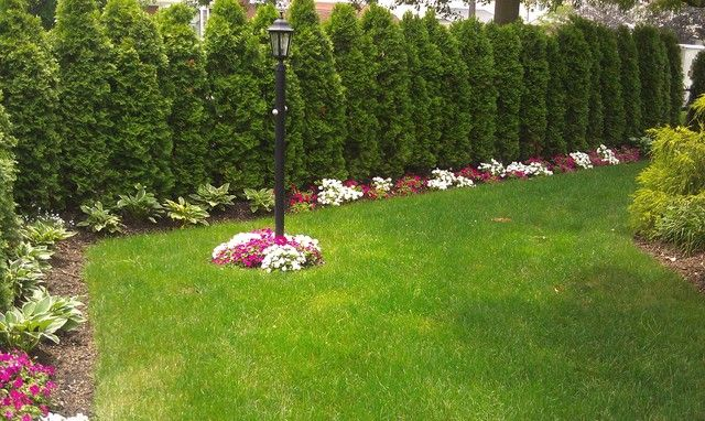 Picture of landscape ideas for corner lot landscaping for Large lot landscaping ideas