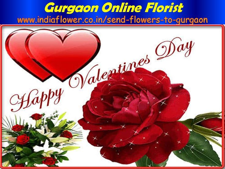 Gurgaon online florist is the world best online florist in india. I think Gurgaon online florist gives you better function in any occasions. You can send flowers to Gurgaon to your lover and relatives. http://www.indiaflower.co.in/send-flowers-to-gurgaon