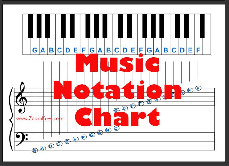 30 Best Music Tools Images On Pinterest Beginner Piano Lessons