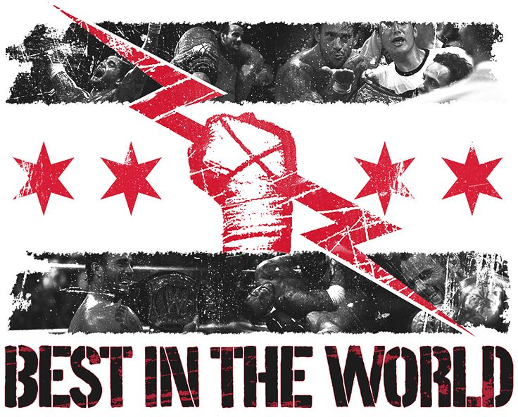 Cm Punk 2015 Best In The World Wallpaper - WallpaperSafari