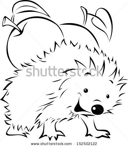 Hedgehogs Stock foto´s, Hedgehogs Stock fotografie, Hedgehogs Stock afbeeldingen : Shutterstock.com