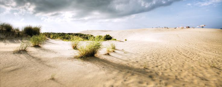 Guide to visiting the Northern Beaches in Outer Banks. #OBX