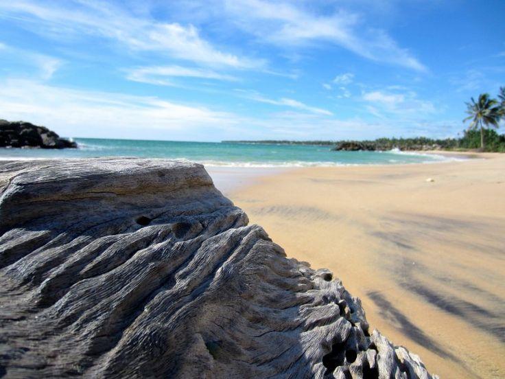 Sri Lanka #Sri #Lanka #SriLanka #Asia #Asien #Tropical #Tropiskt #Beach #Adventure #Vacation #Strand #Semester #Äventyr #Sea #Hav #Beautiful #Travel #Resa #Resmål #Paradise #Paradis