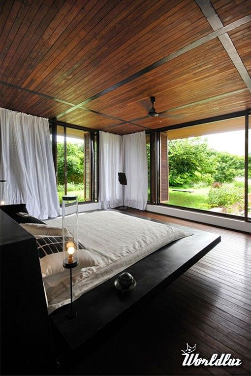amazing houses with floor to ceiling window