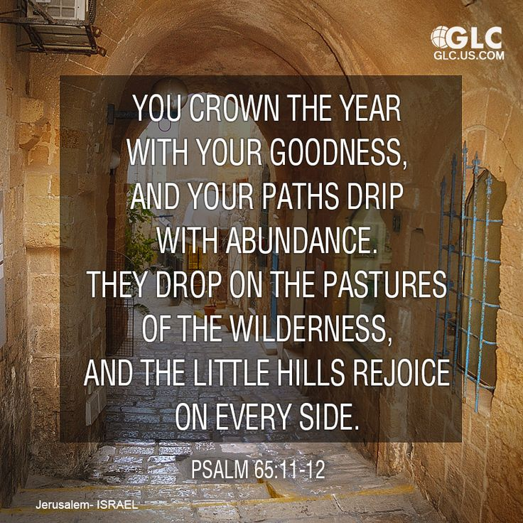 Psalm 65:11-12 You crown the year with Your goodness, And Your paths drip with abundance. They drop on the pastures of the wilderness, And the little hills rejoice on every side.