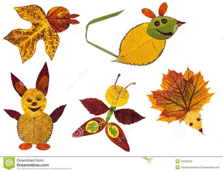 animali foglie - Cerca con Google