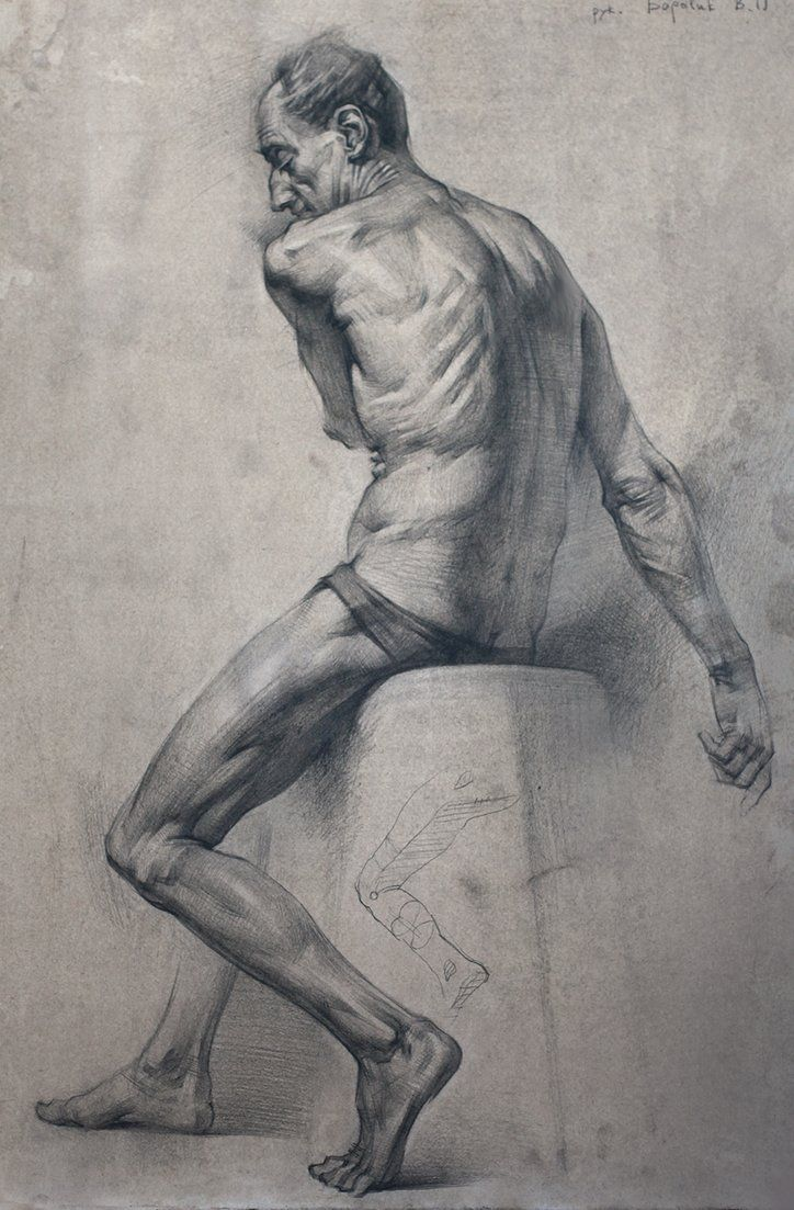 Old Master Drawings Construction Synthetic Form And Glenn Vilppu