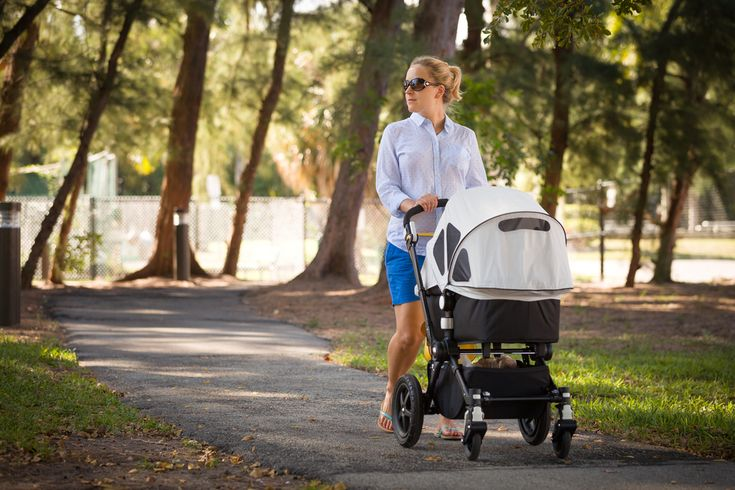 Five Great Walks Mums of Brisbane Can Do With a Pram