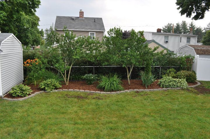 17 best images about backyard landscape on pinterest for Simple back patio ideas