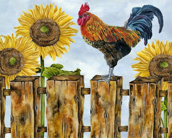 Rooster With Sunflowers. Art print from the original watercolor by Jennifer Lambein. Available on Etsy.com