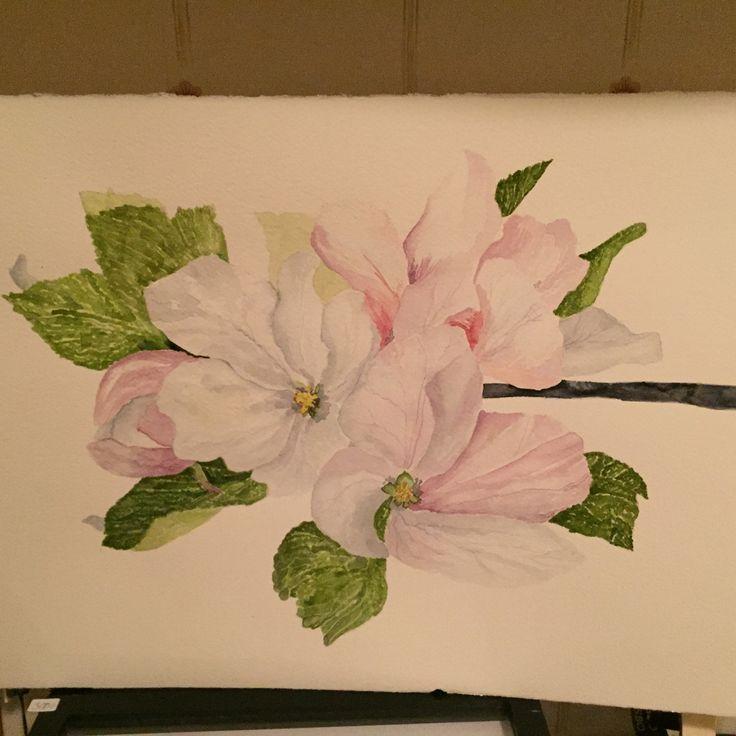 Akvarell äppelkvist ...akvarell by me Agneta Lundbäck Sjölin