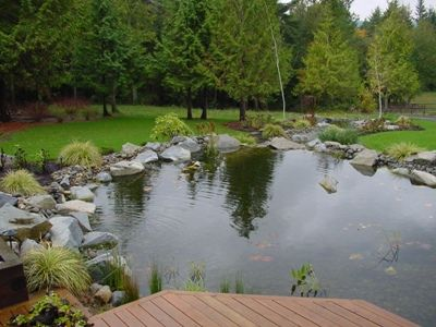 Best 25 pond landscaping ideas on pinterest water pond for Large outdoor fish ponds