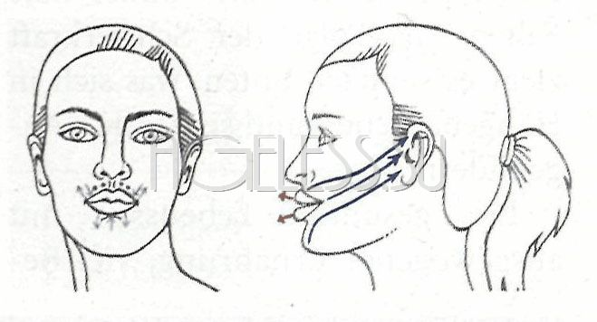 Упражнения для увеличения объема губ (Б. Кантиени)
