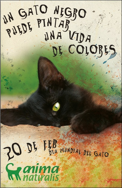 ¡¡¡Feliz Día Internacional del Gato!!! / Happy International Cat Day!!! / Heureux Journée Internationale du Chat!!!    http://greenmob.com.mx/wp-content/uploads/2011/02/gato-negro1.png