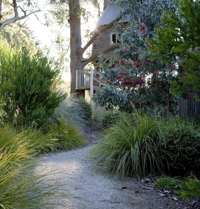 Garden Ideas Australian Native 59 best australian gardens images on pinterest | australian native